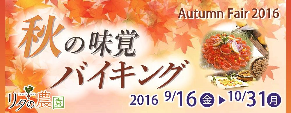 lita-autumn