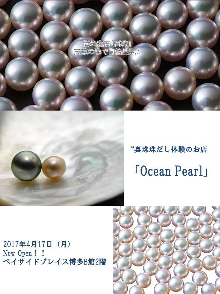 oceanpearl_kiji1
